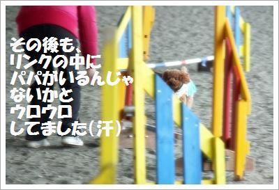 IMG_8102[1]