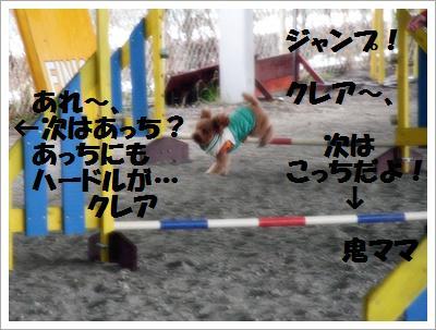 IMG_8123[1]