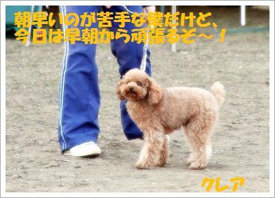 IMG_8283[1]