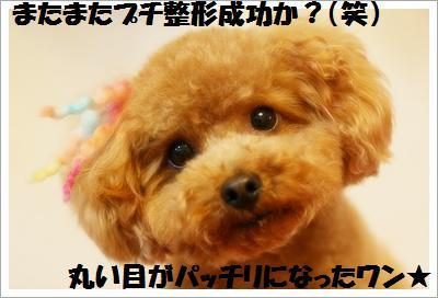 IMG_0914[1]