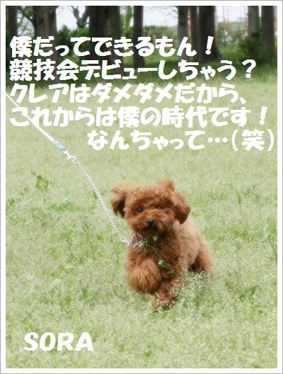 IMG_0978[1]
