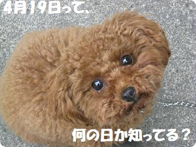 IMG_3229[1]