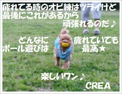 IMG_1514[1]