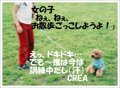 IMG_1503[1]