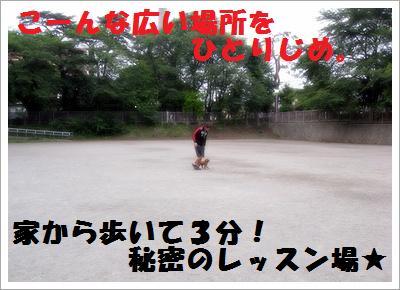 IMG_4040[1]