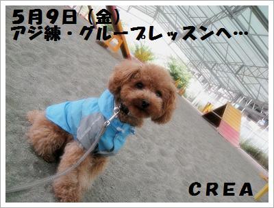 IMG_4104[1]