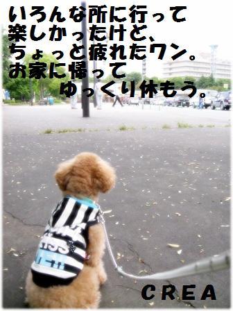 IMG_4284[2]