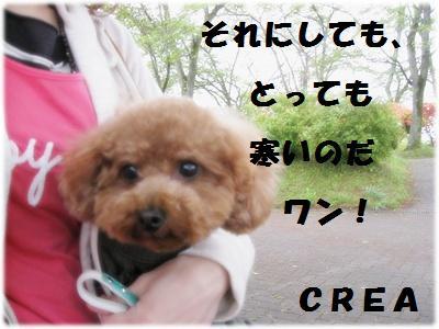 IMG_4277[1]