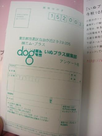CIMG041907.jpg