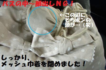 CIMG07062912.jpg