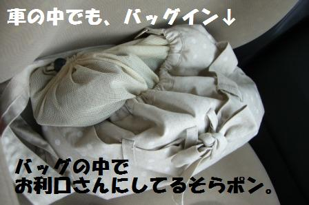 CIMG07070801.jpg