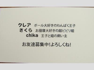 CIMG8670.jpg
