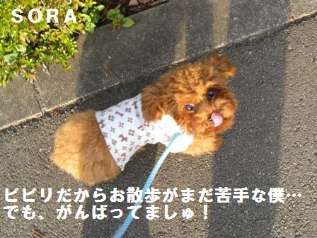 IMG_00053.jpg