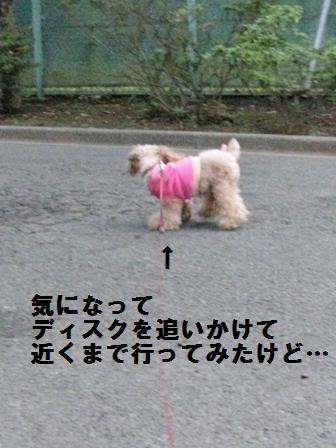 IMG_014.jpg