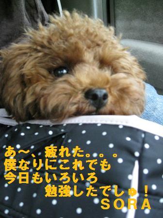 IMG_02864.jpg