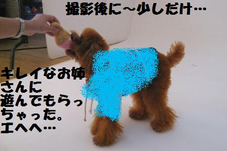 IMG_0964.jpg