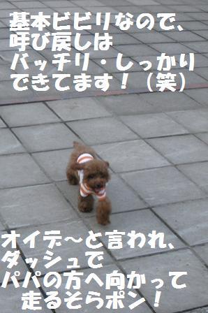 IMG_1374.jpg