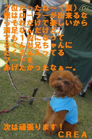 IMG_22111.jpg