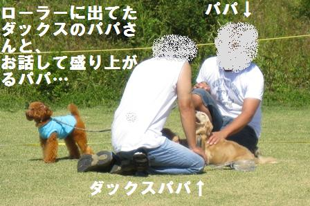 IMG_22331.jpg