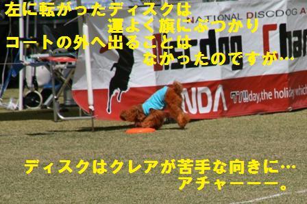 IMG_22951.jpg