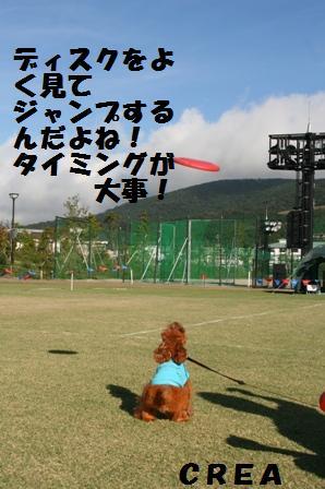 IMG_25211.jpg