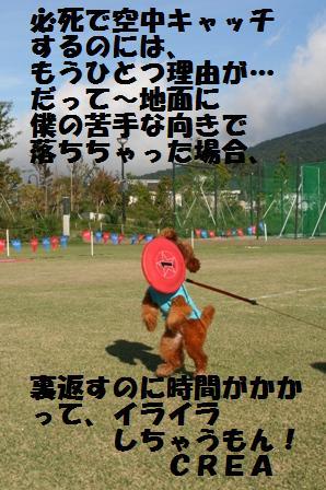 IMG_25411.jpg