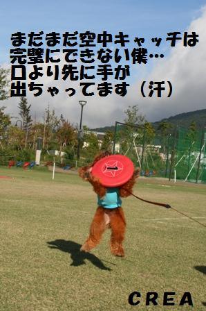 IMG_25481.jpg