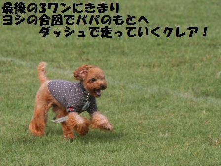 IMG_3053.jpg