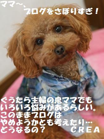 IMG_33953.jpg