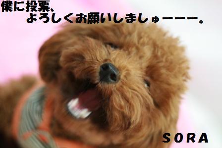IMG_3796.jpg
