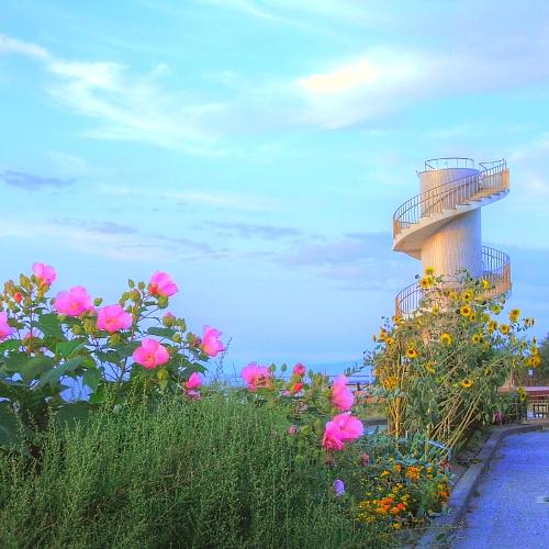 夕暮れの日和山展望台