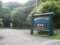 3IMG_6618.jpg