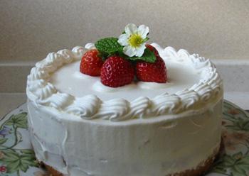 cake2008515eee.jpg