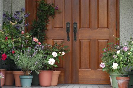 roses2008513-2.jpg