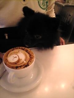 コーヒーとくまちゃん.jpg
