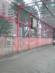 20081209202116