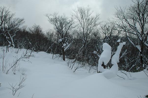 DSC_0573山頂3