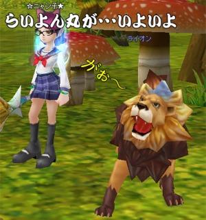 lion922.jpg