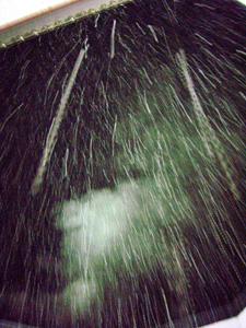 081125初雪