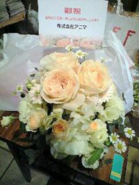 090125アニマ花