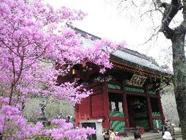 090412妙義神社