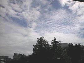 090908秋の空