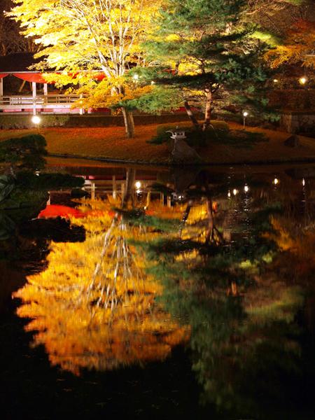 修善寺虹の郷 紅葉ライトアップ2