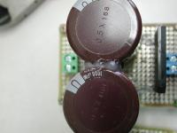 Nm-DSCN3389.jpg