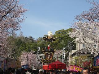 山車と桜と犬山城