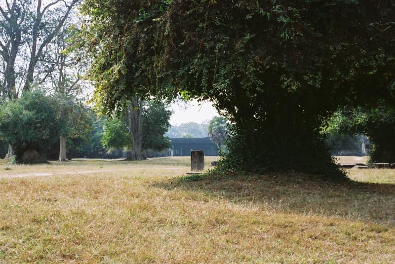 20090429-2.jpg
