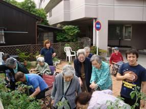 東京都 足立区 介護老人保健施設(入所・短期入所・通所リハビリ) 千寿の郷 菜園プロジェクト 6月14日収穫 (2)