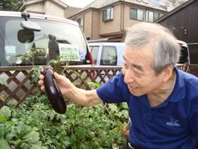 東京都 足立区 介護老人保健施設(入所・短期入所・通所リハビリ) 千寿の郷 菜園プロジェクト 6月14日収穫 (4)