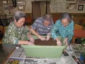 東京都 足立区 介護老人保健施設(入所・デイケア・通所リハビリ) 千寿の郷 菜園プロジェクト