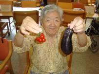 東京都 足立区 介護老人保健施設(入所・短期入所・通所リハビリ) 千寿の郷 菜園プロジェクト  収穫